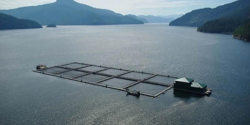 Federal Aquaculture Act