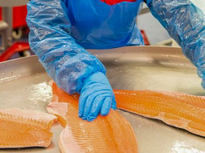 BC salmon farming